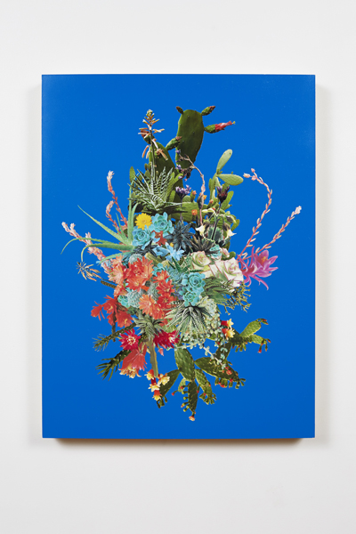CES_Contemporary_Stephen_Eichhorn_Cacti__Succulents_Cluster_Blue